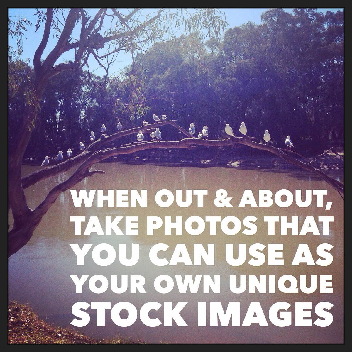 Create Engaging Visual Content - Create Your Own Stock Photos