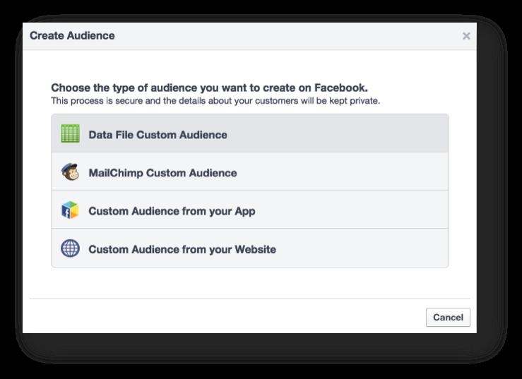 Facebook Advertising Custom Audiences