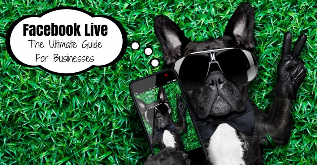 Facebook Live Broadcast: The Ultimate Guide For Businesses